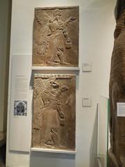 British museum 5