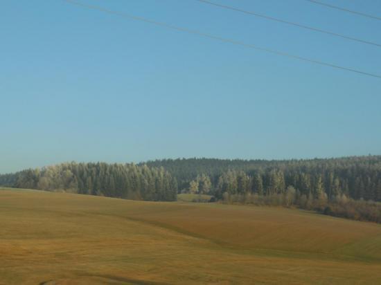 Forêt_Noire (90)