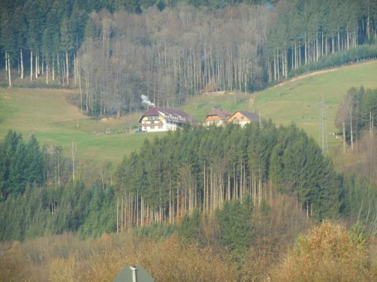 Forêt_Noire (92)